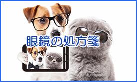 眼鏡の処方箋